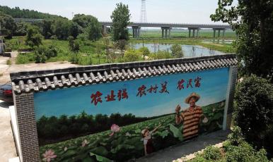 """江西共青城:多措并举 让乡村""""如画"""""""